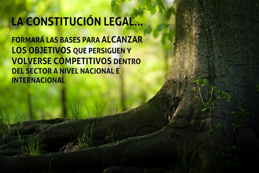 CONSTITUCIÓN LEGAL DE UNA EMPRESA FORESTAL